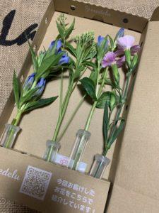 初回で届いたお花はこんな感じです♪