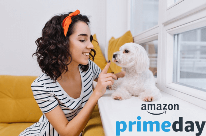 Amazonプライムデー2020目玉商品(ペット編)