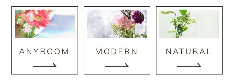 medeluの新しいコースは3種類