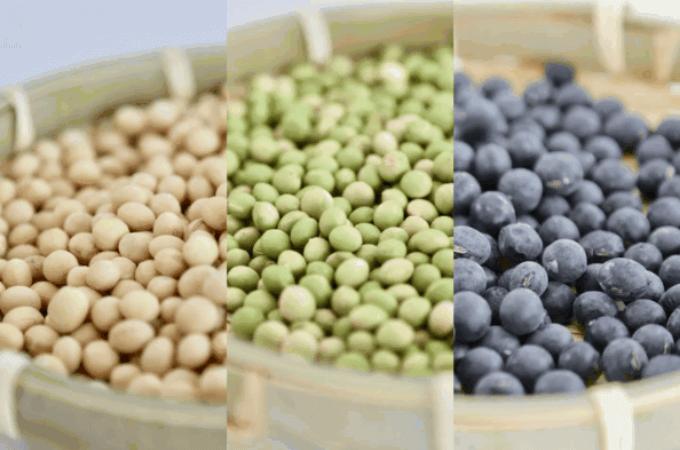 きき豆セットコース