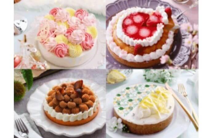 Like Sweets Box(ライクスイーツボックス)「フォトジェニックケーキ便」