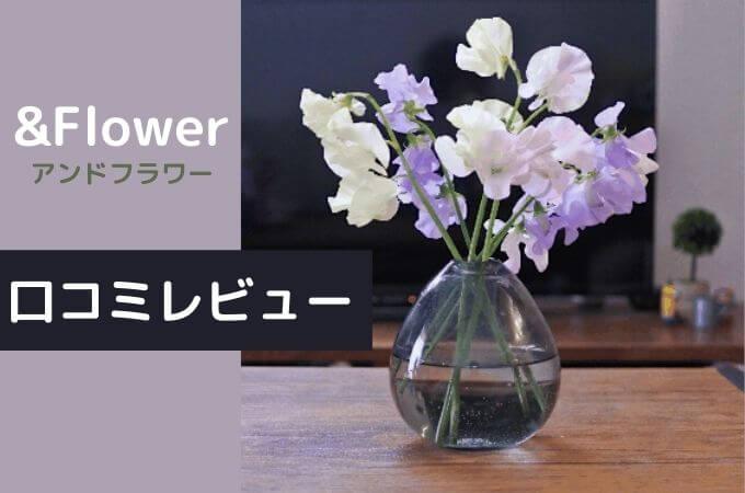 【アンドフラワー(&Flower)の口コミ・評判】他のお花の定期便と何が違う?