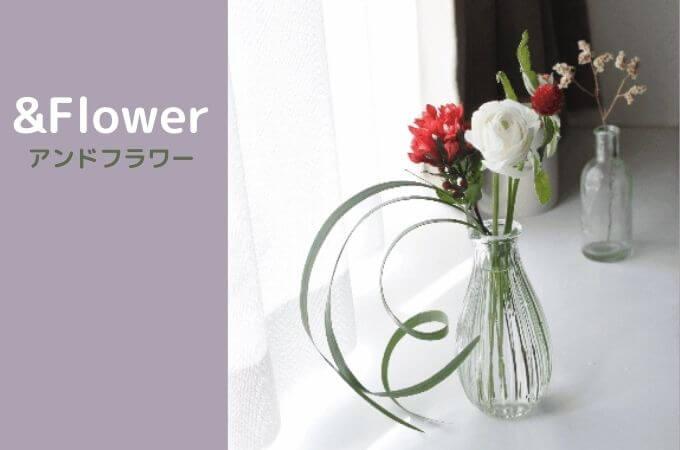 アンドフラワー(&Flower)は他のお花の定期便と何が違う?
