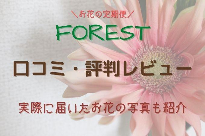 お花の定期便FORESTY(フォレスティー)の口コミ・評判レビュー!