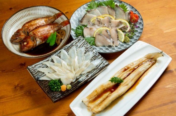 【魚の定期便】サカナDIYの特徴やメリット