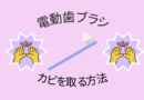 【電動歯ブラシのカビの取り方】お手入れ方法と二度とカビが発生しない方法を解説